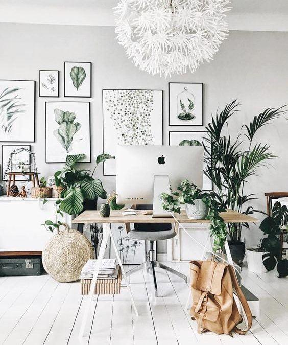 5 Claves Para Incorporar La Naturaleza En Casa